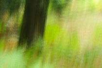 Impressionistic summer meadow by Andy-Kim Möller