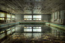 Abandoned Swimming Pool von Roman Robroek