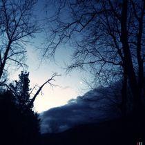 Winter blues 10 by Mikel Cornejo Larrañaga