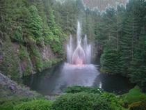 The Fountain von John Bailey