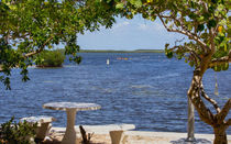 A Picturesque View In Key Largo by John Bailey