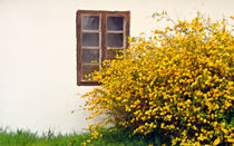 Springtime #6 von Leopold Brix