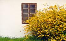 Springtime #6 by Leopold Brix