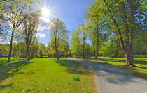 Springtime #1 by Leopold Brix