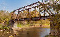Murphyriverwalk20131022-171da