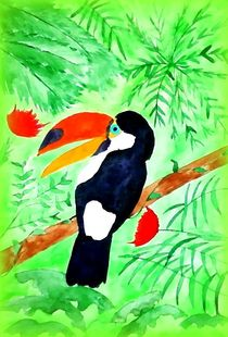 Toucan by nellyart