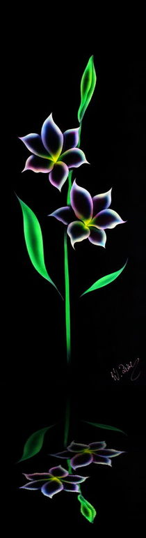 Blütenträume 10 by Walter Zettl