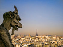 Gargoyle watching over Paris by Alessandro Carpentiero