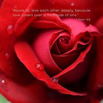 EN I Peter 4:8 by sebastiano secondi
