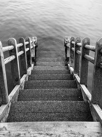 Stairway to Danube von Markus Dick