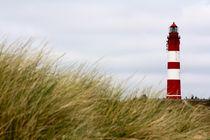 Der Leuchtturm von Amrum von © Ivonne Wentzler