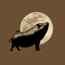 barking pig von barmalisirtb