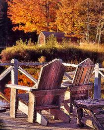Adirondack Chairs by George Robinson