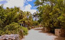 Walking Through Queen Elizabeth II Botanic Park von John Bailey