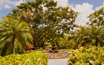 Cayman Island Botanic Park Fountain von John Bailey
