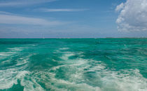 Leaving Stingray City by John Bailey
