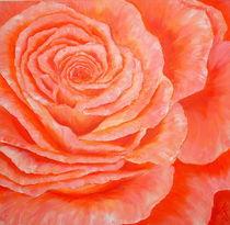 """""""Rose"""" von Maria Killinger"""