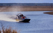 Airboat Rides by John Bailey