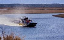 Airboat Rides von John Bailey