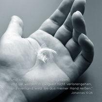 DE John 10:28 by sebastiano secondi