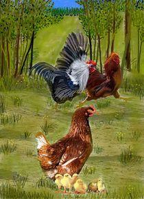 Hühnergeschichte von Heidi Schmitt-Lermann