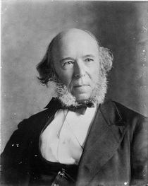 Herbert Spencer 1820-1903 von Bridgeman Art