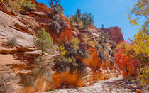 A Beautiful Gorge At Zion National Park by John Bailey