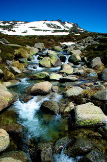 Mount kosciuszko Stream von Tim Leavy