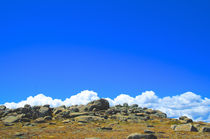 Top of Mount Kosciuszko #2 von Tim Leavy