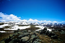 Top of Mount Kosciuszko by Tim Leavy