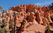 Red Canyon -- Nature's Art Studio by John Bailey