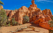Timeless Rock Formations by John Bailey