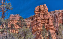 Red Canyon Walls by John Bailey
