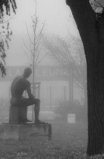Denker im Nebel von Erik Müller