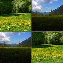"""Viererbild """"Grüne Energie"""" von lisa-glueck"""