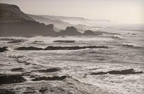 Hartland coast von Pete Hemington