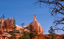 Hammerhead Hoodoo At Bryce Canyon von John Bailey