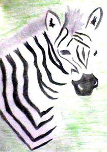 Zebra von nellyart
