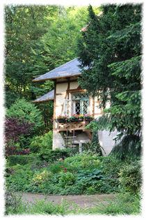 House in the woods von mario-s