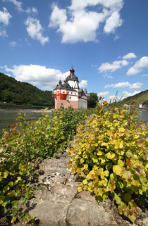 Pflaz bei Kaub am Rhein von buellom