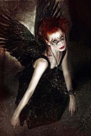 Black-wingsshadowness