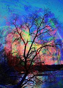 Sonnenuntergang 2 by Walter Zettl