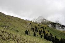 Weg zum Gipfel by Jens Berger