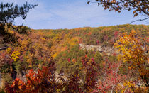 Colors Across Cloudland Canyon von John Bailey