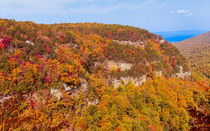 Colorful Cloudland Canyon In The Fall von John Bailey