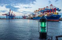 Containerumschlag im Hamburger Hafen Waltershof von Dennis Stracke