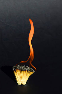 Dying Flame on Burnt Matches by Chris Edmunds