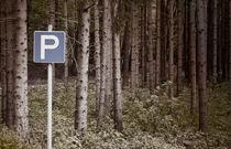 Parking spot von Leopold Brix