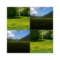"""Viererbild """"grüne Energie"""" pp von lisa-glueck"""
