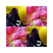 """Viererbild """"Kristall und Blüten"""" pp von lisa-glueck"""
